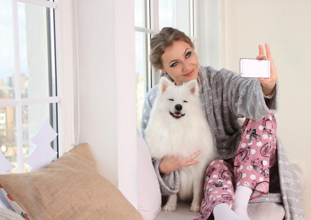 how to look after dogs in self-isolation