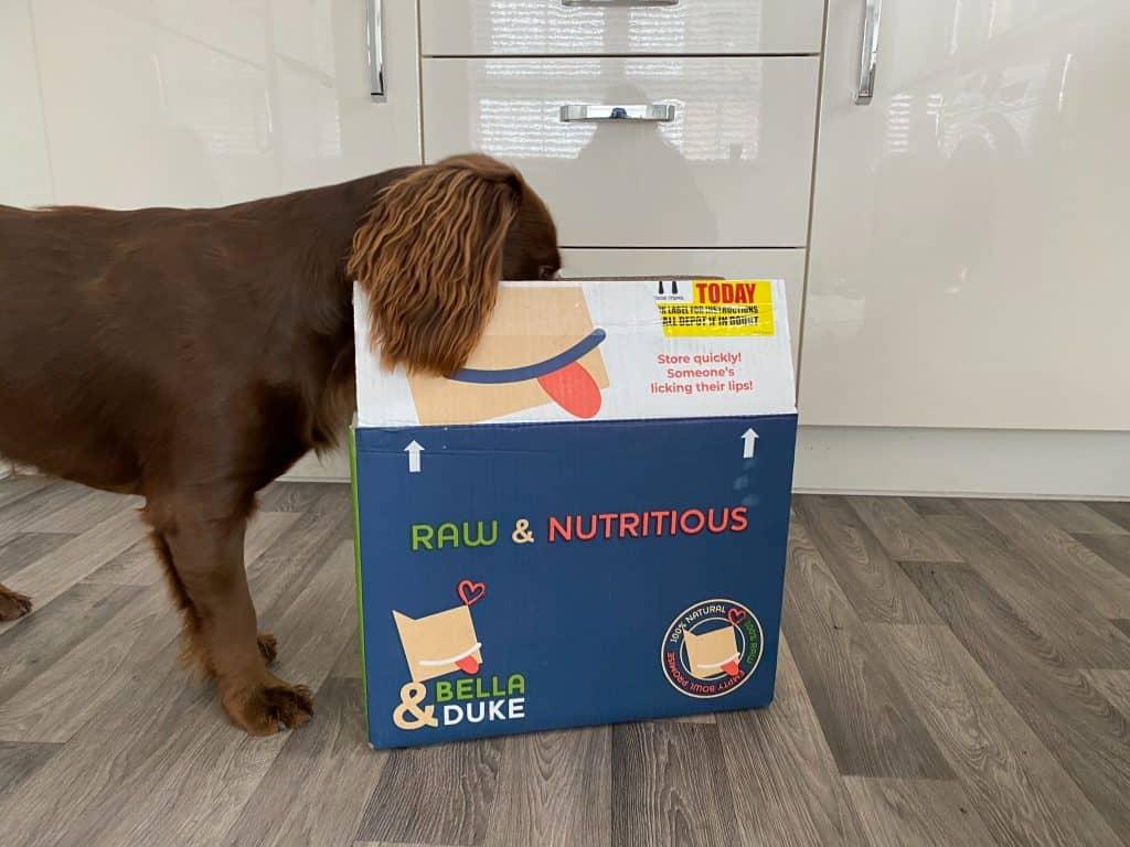 bella and duke raw food review